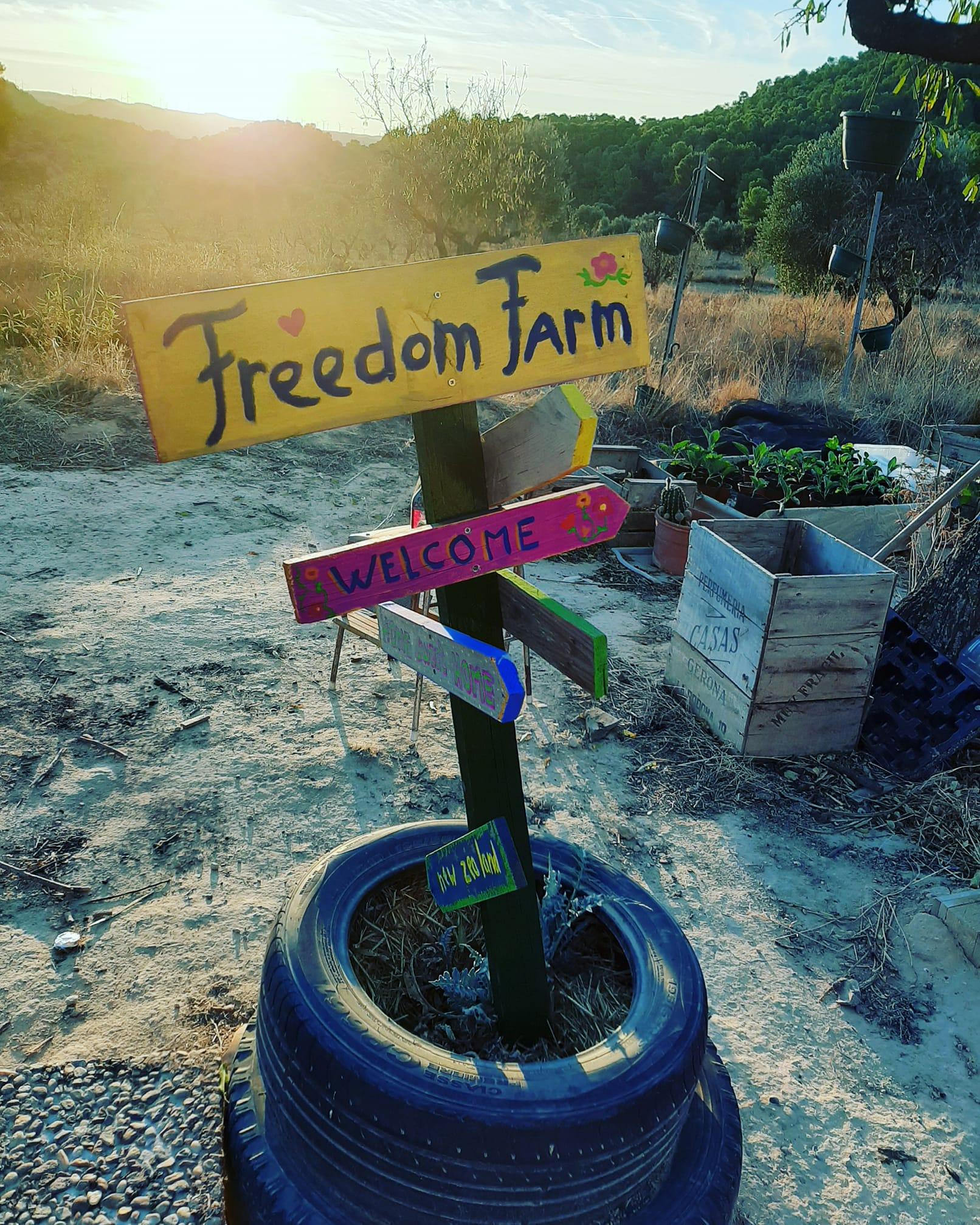 Benvenuti alla Freedom Farm