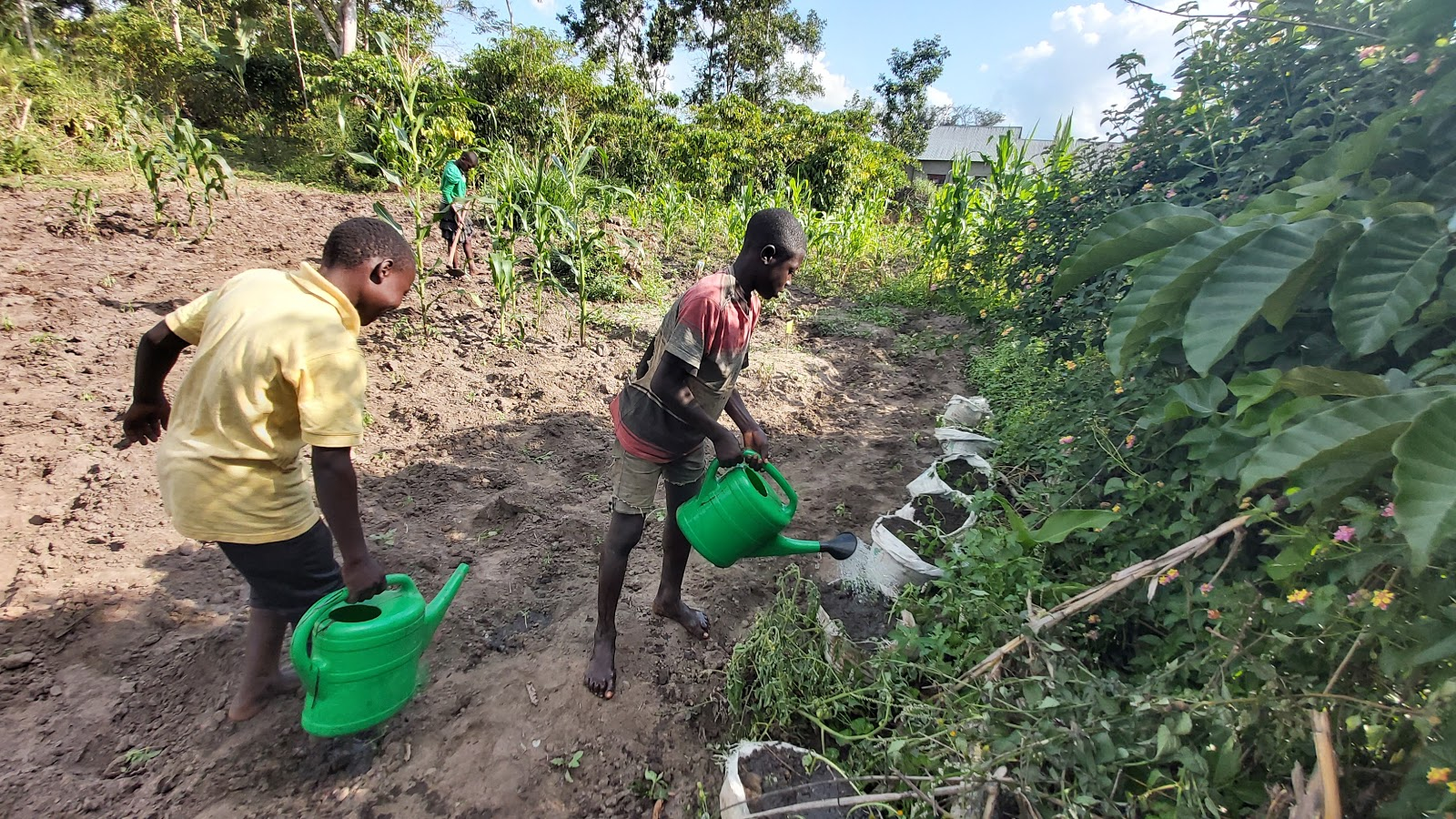 Part Two: Water and Permaculture in Uganda