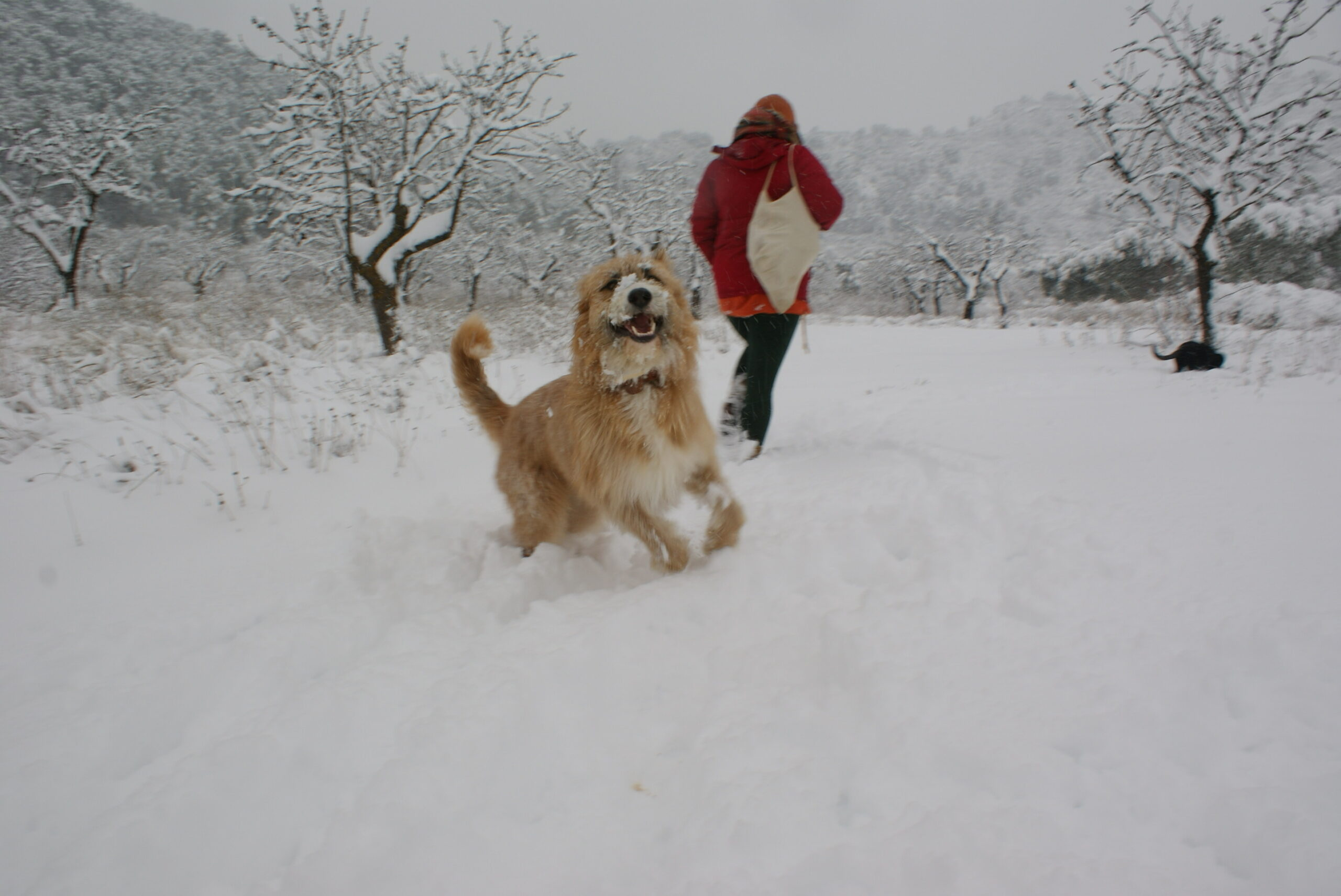 Freedom Farm Volunteers: Megan and Isaac in the snow.