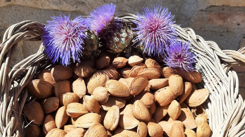 The true story behind the Freedom Farm Almonds: what, where, how, and why.